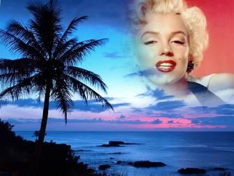 montagem fotos em uma paisagem da costa idilica e ceu azul xx criar uma colagem com sua foto com um fundo em vemos uma grande palmeira e o ceu paisagem com uma fotografia mostra ate as bordas aparecem remover bordas e efeitos suaves lembrar alguem especial colocando sua imagem ceu um do sol paraiso