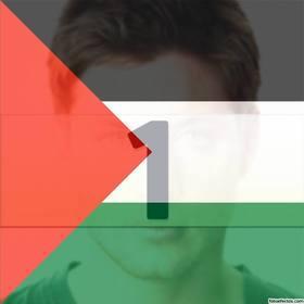 filtro da bandeira palestina colocar em sua foto