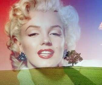 colagem com uma foto uma paisagem com um campo verde e ceu azul colocar uma foto ao lado uma arvore