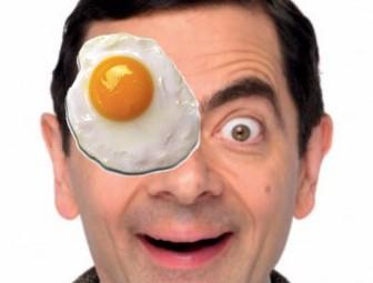 autocolante fried colocar em suas imagens sem necessidade baixar qualquer ovo software