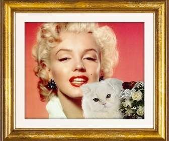 Moldura de ouro com um gato persa branco e rosas vermelhas e brancas para colocar sua foto amor com seu namorado ou namorada.