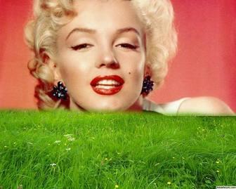 Moldura para grama verde na sua foto.