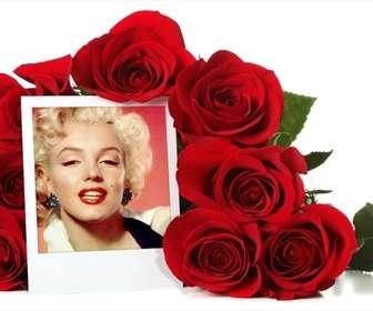 photo frame on-line rodeado um buque rosas