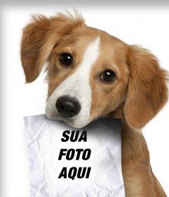 Fotomontagem com cachorro triste olhando para o seu proprietário, que tem um papel na boca, onde você pode fazer upload de uma foto