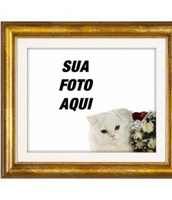 Moldura de ouro com um gato persa branco e rosas vermelhas e brancas para colocar sua foto amor com seu namorado ou namorada