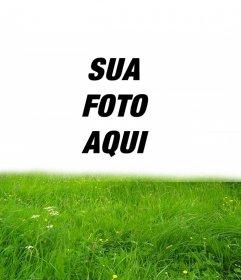 Moldura para grama verde na sua foto
