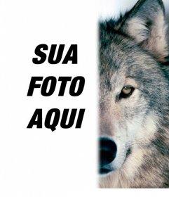 Fotomontagem para colocar um rosto lobo ao seu lado, completando a sua metade