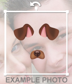 Coloque as orelhas e o nariz de um cachorro em suas fotos gratuitas