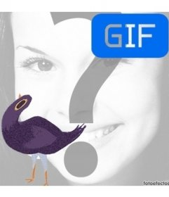 Lixo Doves meme animação gif para colocar a sua foto dentro