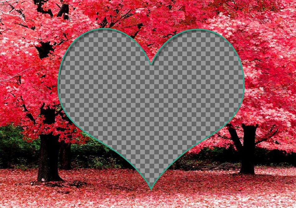 Quadro para duas fotos dentro de um coração em flores de cerejeira