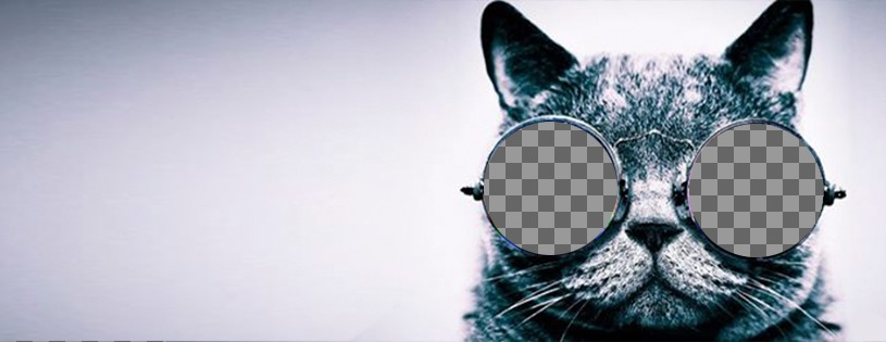 35bc1e2ebdea2 Foto da capa personalizada no Facebook com um gato com óculos de sol ...