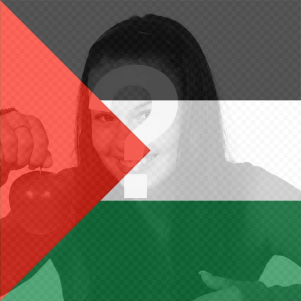 Filtro da bandeira de Palestina para colocar em sua foto
