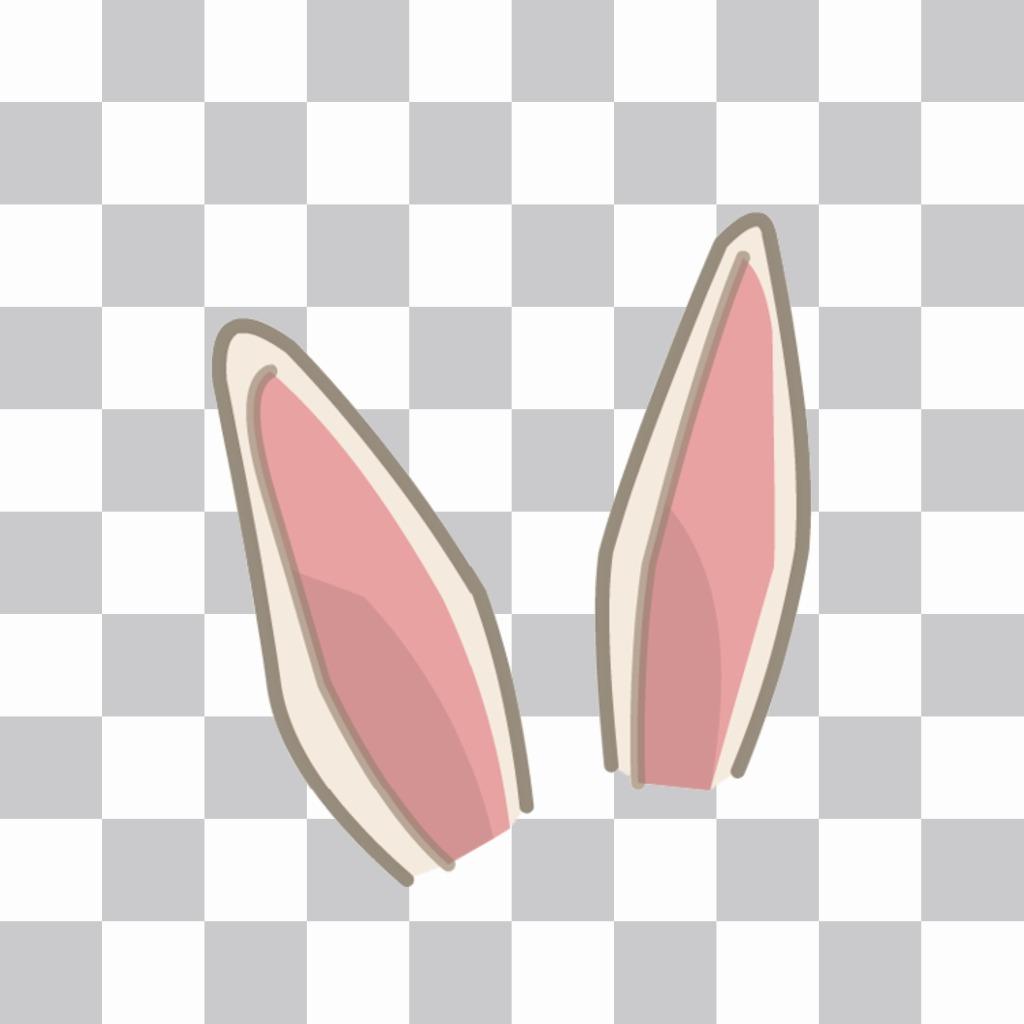9660409579 Adesivo para colocar algumas orelhas de coelho em sua foto - Fotoefeitos